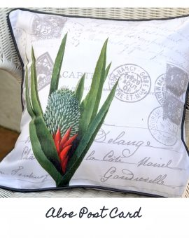 Aloe Postcard Cushion