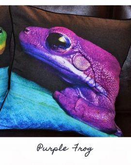 Purple Frog Cushion